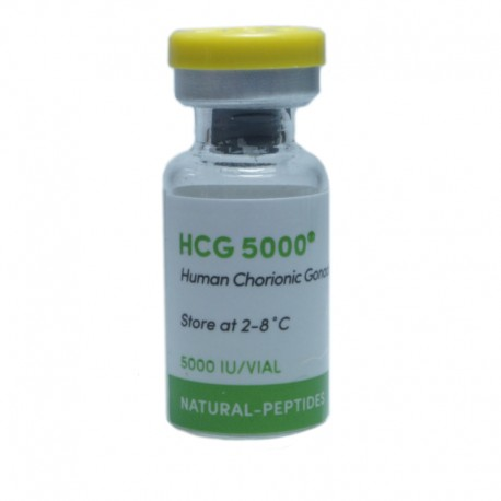 HCG - 5000 iu/amp PG -Natural Peptides